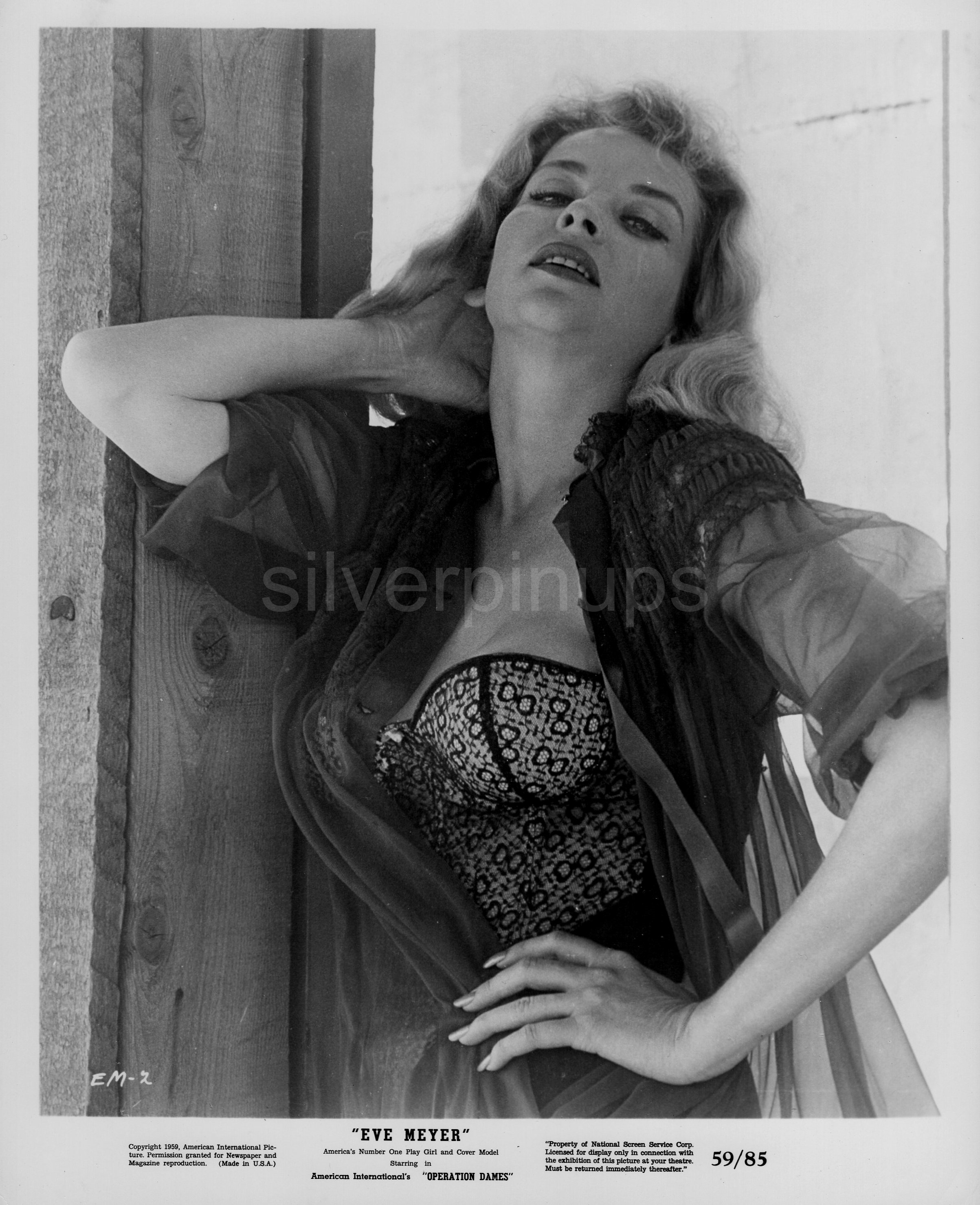 Eve Meyer nude (91 gallery), foto Ass, iCloud, swimsuit 2015