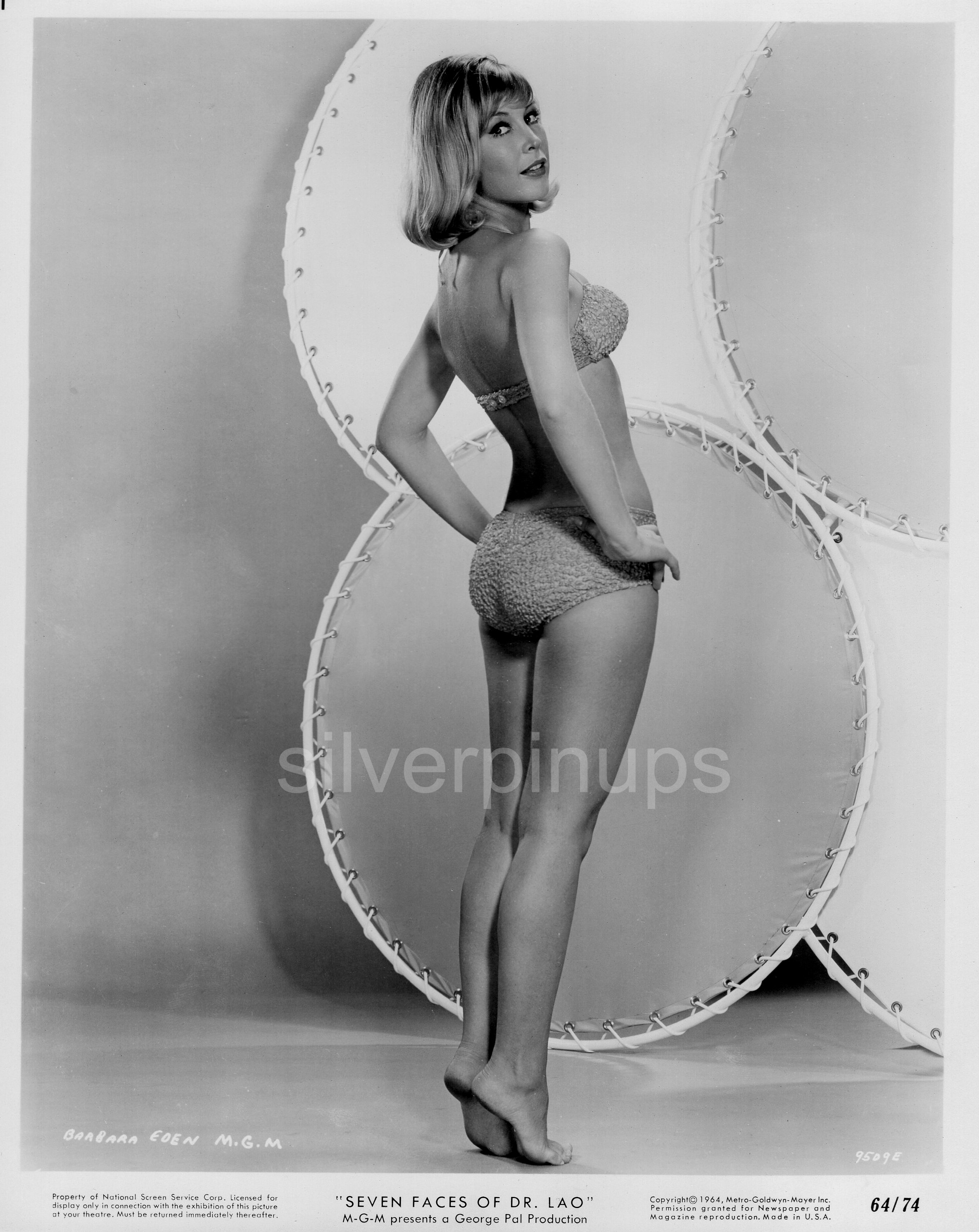 Barbara eden bikini photos